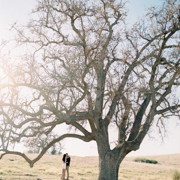 Malibu Creek State Park Engagement | Sarah + Mike